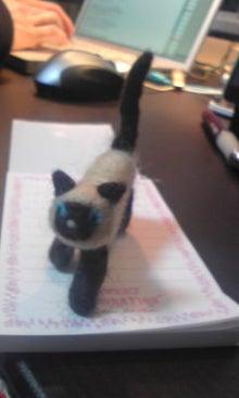 猫雑貨cat's meow(キャッツ・ミュウ)-Image395.jpg