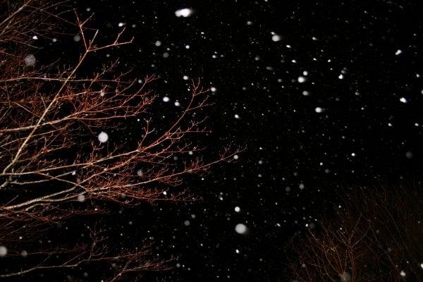 太宰 治 津軽 の 雪