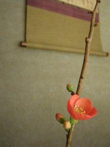想いつくままに◆茶器・茶道具・陶芸品販売「夢追い人」亭主ブログ
