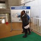 東京水のHPで。。。の記事より