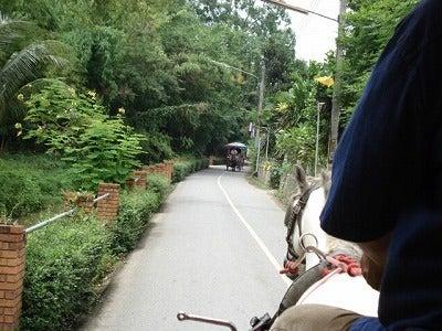 はちのアジア旅ノート-チェンマイ
