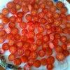 明日、撮影用のミニトマトの画像
