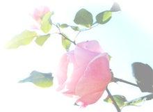 手づくり☆幸せ石けん Flore du savon ~フロール・ド・サボン~