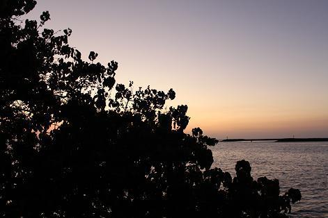 ハワイ島で大好きな仕事をしながら、心豊かに暮らすピース小堀 の ブログ -夕焼け2