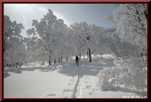 ロフトで綴る山と山スキー-0214_1213