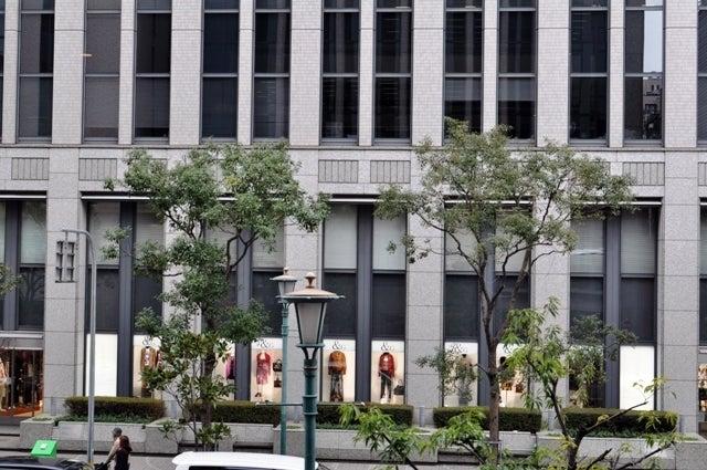 茶々吉とデジ一 のんびり旅-2010/2/14神戸栄町通り