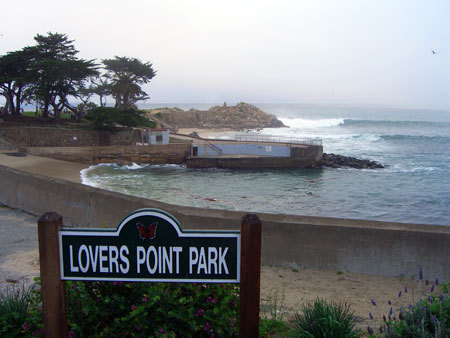 Campbell, CA ~ベイエリアでの暮らし~-Lovers Point Park