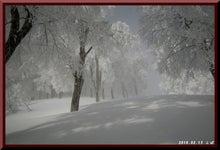 ロフトで綴る山と山スキー-0213_0947