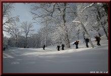 ロフトで綴る山と山スキー-0214_0916