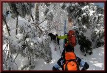 ロフトで綴る山と山スキー-0214_1014