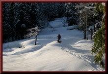 ロフトで綴る山と山スキー-0214_0744