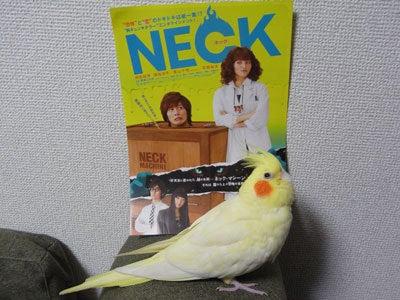 【たんぽぽの惑星】-NECK