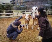ラブエステ★ A嬢のブログ-20100216110101.jpg