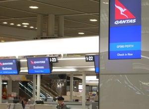筆文字 虎 Works  &  書家 ・ 瞬生の筆やすめ「トラのたわごと」-成田空港