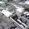 銀世界東京…そして埼玉出張再開!の画像