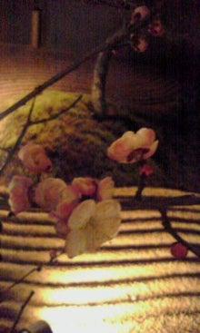 太陽族花男のオフィシャルブログ「太陽族★花男のはなたれ日記」powered byアメブロ-100220_0032~002.jpg