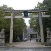 樹齢3000年?!木々のパワーがすご~いっっ★ 大三島 大山衹神社の画像
