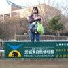 茨城県自然博物館の画像