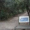 仙酔島のパワーは厳島神社とも関係があったとは・・・?!その3の画像