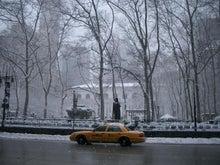 N.Y.に恋して☆-Briant park with snow