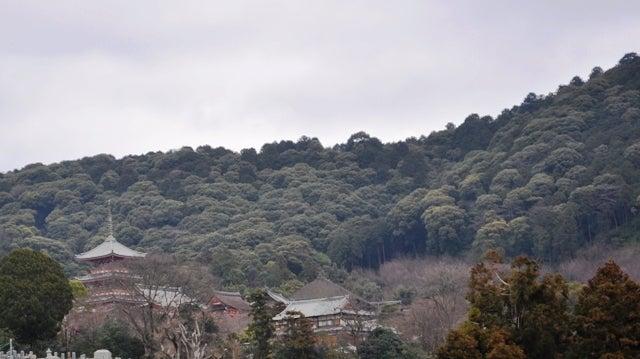 茶々吉とデジ一 のんびり旅-2010/2/28大谷本廟6