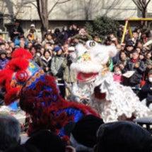 春節~獅子舞・龍舞~