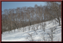 ロフトで綴る山と山スキー-0228_1254