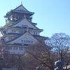 * 大阪城に住んでる猫ちゃん?の画像
