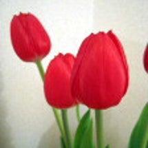 お花のチカラ