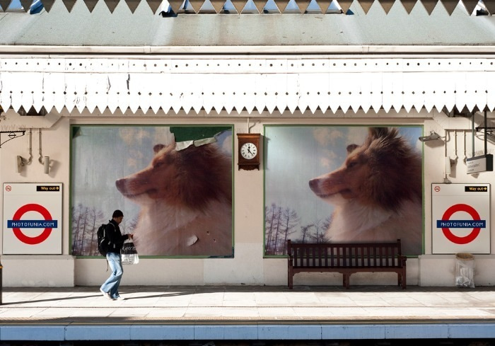 愛犬リーフのボイス、VOICE、ウォイッス!-電車が来るまで