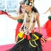 新規レッスン生募集 名古屋タヒチアンダンス Te Marama TAHITIの画像