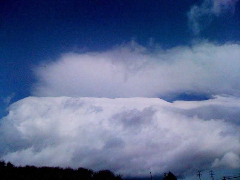 愛犬リーフのボイス、VOICE、ウォイッス!-雪みたいな雲・・