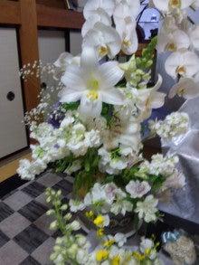 甘えん坊Mダックスのひめ ~☆POWER OF LOVE☆~-100312_181201.jpg
