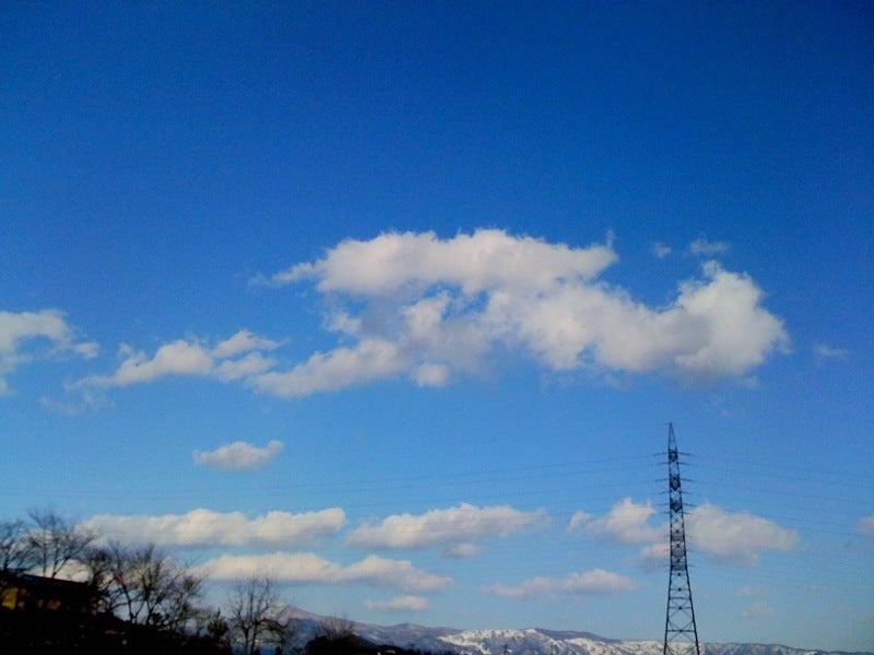 愛犬リーフのボイス、VOICE、ウォイッス!-雲が遠い