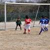 U10 サッカー観戦の画像