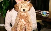 yuimokoさんのブログ-2010032119330000.jpg