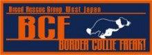 ボーダーコリーフリーク!-BCF_logo