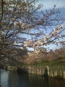 ★ラーメン占い blog★-100327_1451~01.jpg