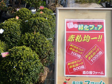 松野町の道の駅ファームから