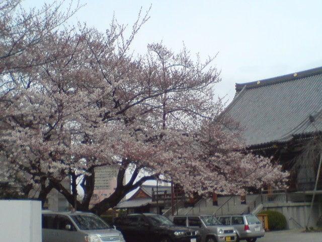湯島 だらだら日記-20100328215200.jpg