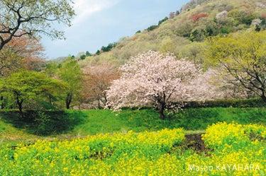 $わくわくおおひら -田舎の魅力と楽しさ再発見-
