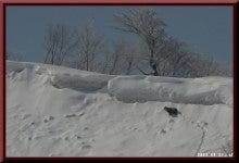 ロフトで綴る山と山スキー-0327_0938