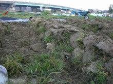 耕作放棄地をショベル1本で畑に開拓中!!週2日6時間+αでこんなにやってる家庭菜園 byウッチー-100329耕作放棄地畝たて02-1