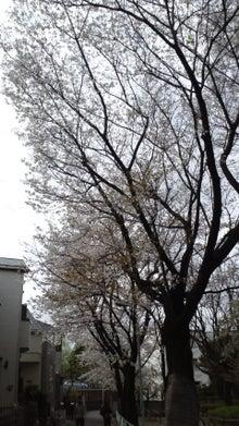 365日緑魂-2010040309280000.jpg