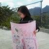ピンクの凧の画像