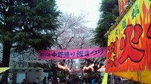 東京・小平市の行政書士ブログ-中野通り桜まつり