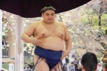 $現役力士「普天王」どすこい大相撲日記 Powered by アメブロ-t
