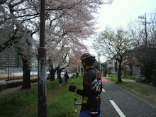 女だらけの自転車生活-2010041110330000.jpg