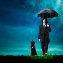 Sweet Rain…