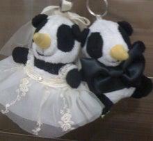 $コトコトことこ-Wedding01